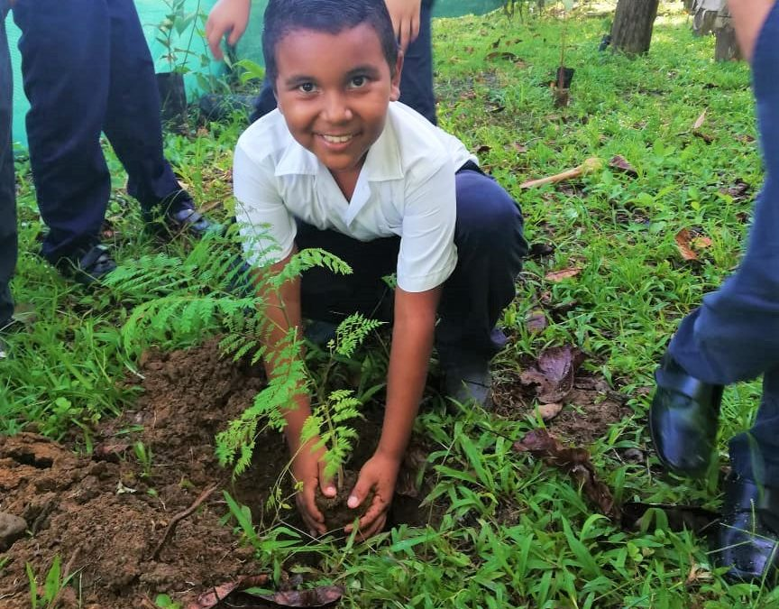 Recuperando el bosque en el corazón de Osa