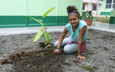 Continuing to Beautify the Heart of Osa